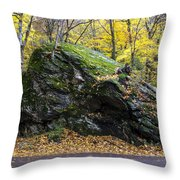 Beautiful Vermont Scenery 15 Throw Pillow