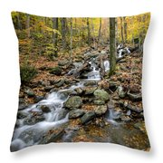 Beautiful Vermont Scenery 16 Throw Pillow