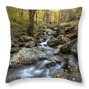 Beautiful Vermont Scenery 17 Throw Pillow