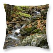 Beautiful Vermont Scenery 18 Throw Pillow