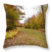 Beautiful Vermont Scenery 25 Throw Pillow
