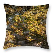 Beautiful Vermont Scenery 28 Throw Pillow