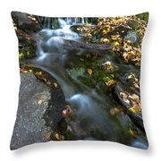 Beautiful Vermont Scenery 30  Throw Pillow