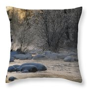 Beautiful View Of A Stream Finding Throw Pillow