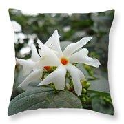 Beautiful White Flower With Orange Center Throw Pillow