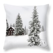 Beautiful Winter Landscape With Trees And House Throw Pillow
