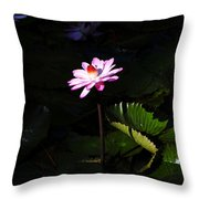 Beauty From The Depths Throw Pillow