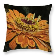 Beauty In Orange Petals Throw Pillow