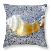 Beauty In Sand Throw Pillow