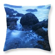 Beauty In The Ebb And Flow Throw Pillow