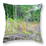 Beauty In The Forest Throw Pillow