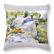Beauty In The Rocks Throw Pillow
