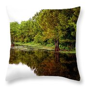 Beauty In The South Throw Pillow