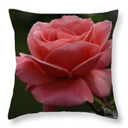 Beauty Of A Rose Throw Pillow