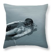 Beauty On The Water Throw Pillow