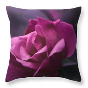 Beauty Revisited Throw Pillow