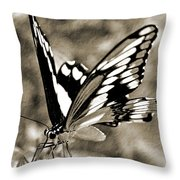 Beauty Simplified Throw Pillow