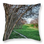 Beauty Without Blossoms Throw Pillow