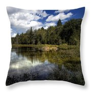 Beaver Lodge Throw Pillow