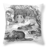 Beavers Throw Pillow