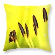 Bee A Little Different Throw Pillow