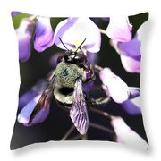 Bee And Blooms - Card Throw Pillow