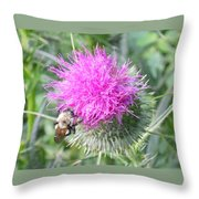Bee And Thisle Throw Pillow