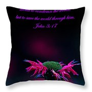 Bee Baum John 3 17 Throw Pillow