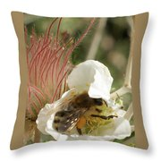 Bee Break Throw Pillow