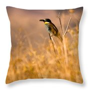 Bee Eater With Insect Throw Pillow