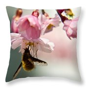 Bee Fly Feeding 2 Throw Pillow