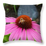 Bee Gathering Pollen On Cone Flower Throw Pillow