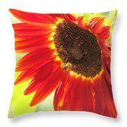 Bee On A Sunflower Throw Pillow