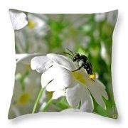 Bee On Primrose Throw Pillow