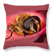 Bee On Rose Petal Throw Pillow