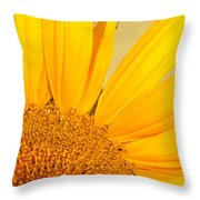 Bee On Sunflower Throw Pillow