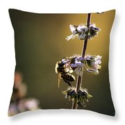 Bee On The Basil Throw Pillow