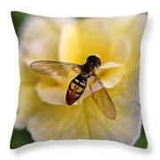 Bee On Yellow Flower Throw Pillow