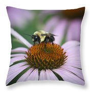 Bee Resting Squared Throw Pillow