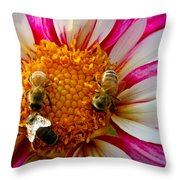 Bee Time Throw Pillow