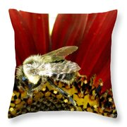 Bee Tip Toes Throw Pillow