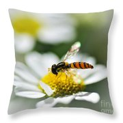 Bee With Rainbow Wings Throw Pillow