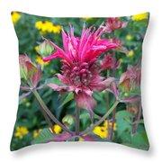 Beebalm Flower Throw Pillow