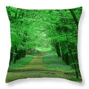 Beechwood Grove Throw Pillow