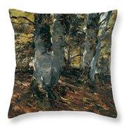 Beechwoods At Polling Bavaria Throw Pillow
