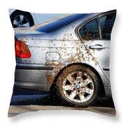 Beemeer Throw Pillow