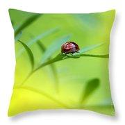 Beetle Butt Throw Pillow