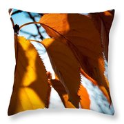 Before The Leaves Fall Throw Pillow