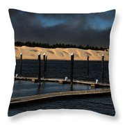 Before The Storm Throw Pillow by Bonnie Bruno