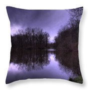 Before The Storm Throw Pillow by Paul Ward